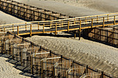 Wooden walkway and fence on the beach of the Atlantic, Odeceixe, Algarve, Portugal