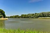 View over the Danube floodplains on a wonderfully sunny day, Donauradweg, Orth near Vienna, Austria