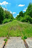 Overgrown, disused railway line between trees, Nadasd, Hungary