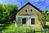 Derelict house with a wild garden, near Kerkafalva, Hungary