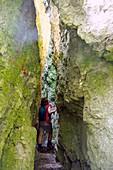 Wandern bei Streitberg im Wisenttal, Schlucht, Fränkische Schweiz, Oberfranken, Bayern, Deutschland