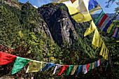 Thousands of prayer flags fly over the way to the tiger's nest.