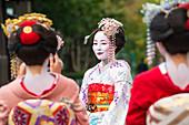Women dressed in traditional geisha dress taking photograph, Kyoto, Japan
