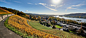 View of the autumnal Rhine near Bad Honnef, Germany