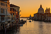 Venice; Tomorrow; In the morning; Channel; Water; Light; Italy; Europe; old; Architecture; Lighting; Gothic; Gothic; Travel; Holiday destination; City; UNESCO World Heritage Site; Veneto; Boats; Adriatic Sea; Exterior view; Exterior view; Outdoor shot; Outdoor shot; Europe; Island; Italy; Channel; Laguna; Veneto; Lagoon; Lagoon city; Mediterranean countries; Mediterranean countries; Sea; Nobody; Travel; Trip around the world; Rialto Bridge; Night time of day; Vacation; Venice; Veneto; Venezia; Veneto; Water; Grand Canal; Santa Maria della Salute