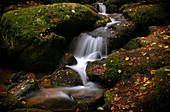 Autumn in the Höllbachtal, Rettenbach, Upper Palatinate, Bavarian Forest, Bavaria, Germany; Europe