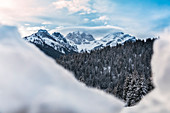 Cimon de la Stia, Focobon and Mulaz framed in the pristine snow, winter landscape, Falcade, Belluno, Veneto, Italy