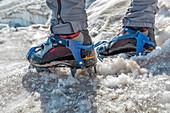 detail of a mountaineer wearing ice crampons, marmolada glacier, Trentino alto Adige, Dolomites, Italy