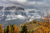 ALta Badia, Bolzano district, South Tyrol, Italy, Europe. Rainy weather on the hike to the Armenatara meadows