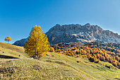 Alta Badia, Bolzano province, South Tyrol, Italy, Europe. Autumn on the Armentara meadows, above the moantains of the Zehner and Heiligkreuzkofel