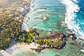 Tropical trees on white sand beach along the coral reef, aerial view, Trou d'Eau Douce, Flacq, Indian Ocean, East coast, Mauritius
