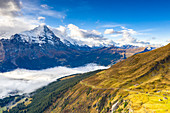 Autumn colors in the alpine landscape with Mount Eiger in background seen from First, Grindelwald, Canton of Bern, Switzerland