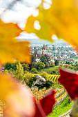 Spiez Castle framed by vine leaves in autumn, canton of Bern, Switzerland