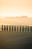 Early morning between Val d'Orcia Hills. Pienza, Val d'Orcia, Siena Province, Tuscany, Italy.