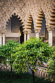 Real Alcazar interiors with orange trees. Seville, Andalucia, Spain