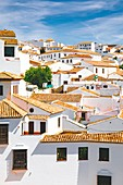 "The village of Ronda, one of the most famous ""white villages"" of Andalusia, Spain."