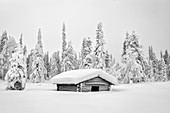 Wooden hut covered with snow, Pallas-Yllastunturi National Park, Muonio, Lapland, Finland