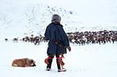 A nenets raindeer herder and his dog watching to the herd. Polar Urals, Yamalo-Nenets autonomous okrug, Siberia, Russia