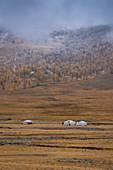Typical mongol ger, Terkhiin Tsagaan Nuur National Park, Mongolia, Mongolian, Asia, Asian