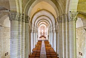 France, Charente Maritime, Saintes, Saint Eutrope church inscribed on the World Heritage List by UNESCO on the roads of Saint Jacques de Compostelle in France, Saintonges, the nave
