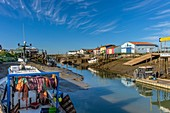 France, Charente Maritime, Marennes, harbour of Cayenne