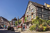 France, Haut Rhin, Route des Vins d'Alsace, Kaysersberg , place of eglise, the fountain Constantin and half timbered houses