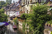France, Haut Rhin, Alsace Wine Route, Colmar, Krutenau district in La Petite Venise district, street Turenne, stroll in boat on Le Lauch