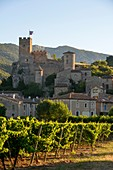 France, Herault, Saint Jean de Bueges, Medieval village in the middle of vineyards at the foot of the mountain of Seranne