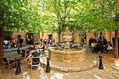 France, Bouches du Rhone, Aix en Provence, place des Trois Ormeaux
