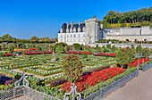 France, Indre et Loire, Loire valley listed as World Heritage by UNESCO, the castle and the gardens of Villandry property of Angélique and Henri Carvallo
