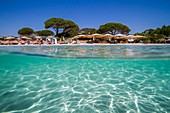 France, South Corsica, Porto-Vecchio, beach of Palombaggia