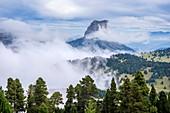 France, Isere, Vercors Regional Natural Park, National Nature Reserve of the Vercors Highlands, Mount Aiguille (alt : 2087 m)