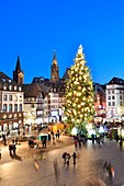 France, Bas Rhin, Strasbourg, old town listed as World Heritage by UNESCO, the big christmas tree on Place Kleber and Notre Dame Cathedral in the background