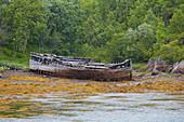 Wreck of a boat in the port of Vestpollen, Austvagoey, Lofoten, Nordland, Norway, Europe