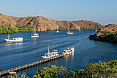 Many boats in a bay on the island of Rinca in the Komodo National Park, Indonesia, Southeast Asia, Asia