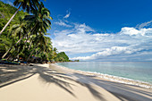 Beach in the south dee village of Saleman on Seram Island, Moluccas, Indonesia, Southeast Asia, Asia