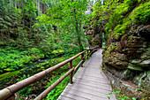 Kamnitz, Fluss, Steg, Wanderweg, Mezni Louka, Nationalpark, Böhmische Schweiz, Tschechien, Europa\n