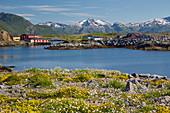 Holzhäuser vor Berg am Fjord in Lauvik, Austvagoey, Lofoten, Nordland, Norwegen, Europa