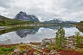 Berg spiegelt sich im Efjorden südwestl. von Narvik, Nordland, Norwegen, Europa
