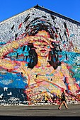 France, Bouches du Rhone, Marseille, Euromediterranee zone, Les Crottes district, street art on the walls of the flea market, artist Remy Uno