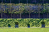 France, Loire Valley listed as World Heritage by UNESCO, Indre et Loire, gardens of the castle of Villandry