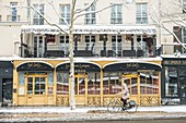 France, Paris, area listed as World Heritage by UNESCO, Quai des Celestins, a cyclist in front of the Bel Canto restaurant, snowfalls on 07/02/2018