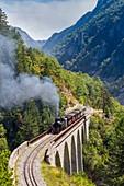 France, Alpes de Haute Provence, the scaffarels to Annot, the Train des Pignes crosses the viaduct of the Donne above the Coulon