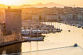 France, Bouches du Rhone, Marseille, the entrance to the Vieux Port and Fort Saint Jean at sunrise