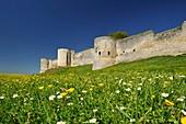 France, Aisne, Coucy Castle Auffrique, Castle, walk under the southern ramparts