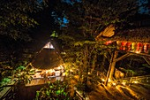 France, French Guiana, Kourou, Camp Canopee, Candlelit dinner, night view from a suspension bridge 10 m above the ground
