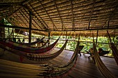 France, French Guiana, Kourou, Camp Canopee, Resting hut with hammocks perched at 10 m from the ground
