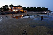 France, Herault, Marseillan, oyster farming, Tarbouriech company, oyster breeding, tasting restaurant, Saint Barth