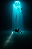 Divers exploring Cenote Maravilla,Mexico