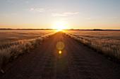 Empty road at sunset,Kulala Wilderness Reserve,Namib Desert,Namibia